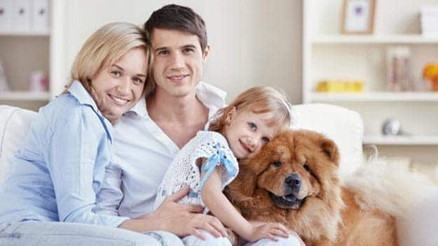 Wills & Trusts dog-young-family Direct Wills Hastings